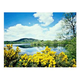 Cartão Postal O Lough de Camlough, condado para baixo, Ireland