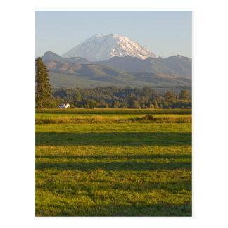 Cartão Postal O Monte Rainier no estado de Washington