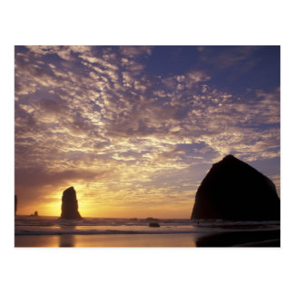 Cartão Postal O NA, costa dos EUA, Oregon, Oregon, Canon encalha