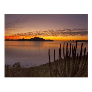 Cartão Postal O nascer do sol sobre Isla Danzante no golfo de 2