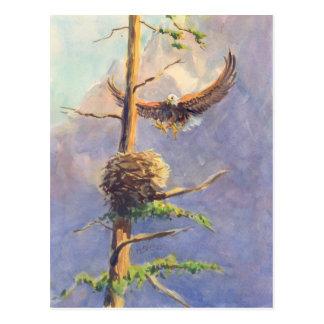 Cartão Postal O NINHO de EAGLE por SHARON SHARPE