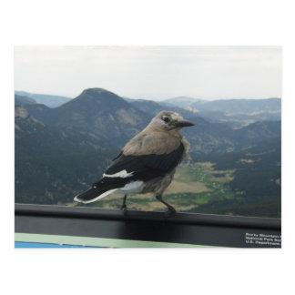 Cartão Postal O Nutcracker de Clark