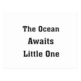 Cartão Postal O oceano espera o pequeno