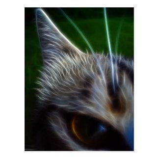 Cartão Postal O olho de gato Photomanipulation