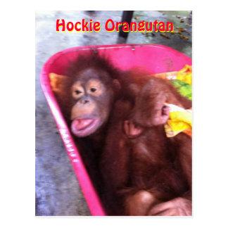Cartão Postal O orangotango de Hockie um special precisa a