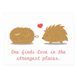 Cartão Postal O ouriço bonito encontra seu amor verdadeiro em