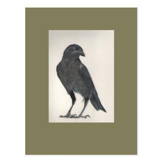 Cartão Postal O pássaro orgulhoso