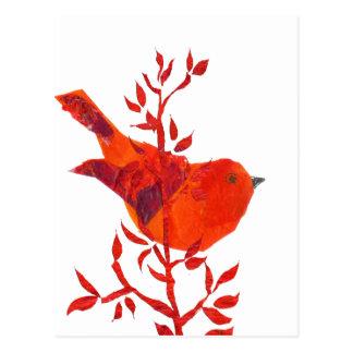 Cartão Postal O pássaro vermelho o mais bonito no planeta