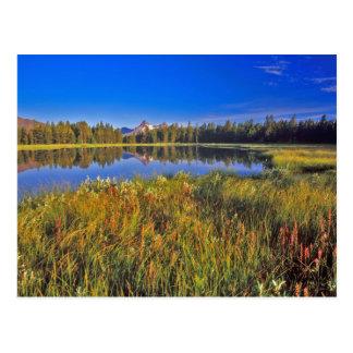 Cartão Postal O pico do índice reflete no lago mud no