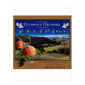 Cartão Postal O pomar da Olympia