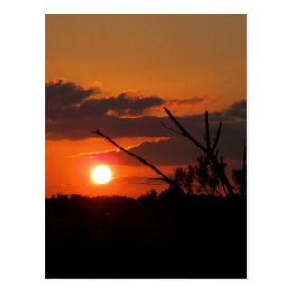 Cartão Postal O por do sol bonito