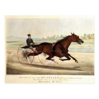 Cartão Postal O rei do relvado, 'St. Julien