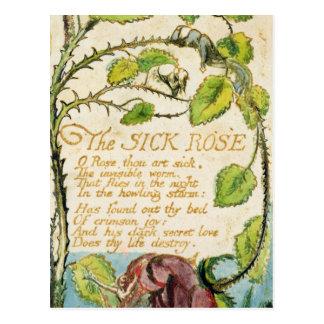 Cartão Postal O rosa doente, das canções da inocência