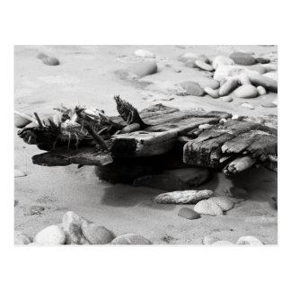 Cartão Postal O Shipwreck da costa do cemitério permanece