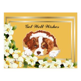 Cartão Postal O tri filhote de cachorro vermelho australiano