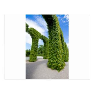 Cartão Postal O verde deixa arcos