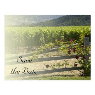 Cartão Postal O vinhedo e o casamento cor-de-rosa da cerca