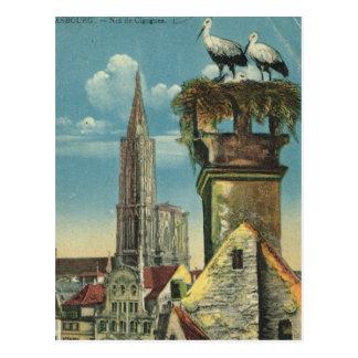 Cartão Postal O vintage France, Strassbourg, cegonha aninha 1930