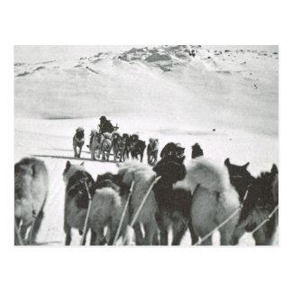 Cartão Postal O vintage Greenland, cão teams na neve