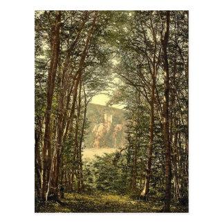 Cartão Postal O Zauberhole (gruta Enchanted) e Rheinstein,