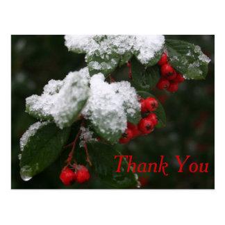 Cartão Postal Obrigado cartão: Inverno