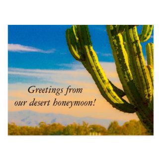 Cartão Postal Obrigado da lua de mel do Saguaro do cacto do