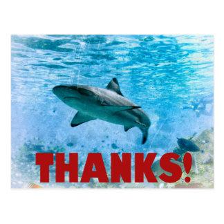 Cartão Postal Obrigado náutico do tubarão da listra do vintage