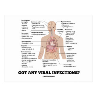 Cartão Postal Obteve todas as infecções virais? Saúde anatômica
