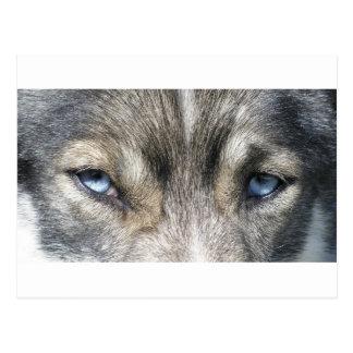 Cartão Postal Odins olho