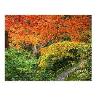 Cartão Postal Okochi Sanso, Arashiyama, Kyoto, Japão 2