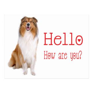 Cartão Postal Olá! cão de filhote de cachorro do Collie que