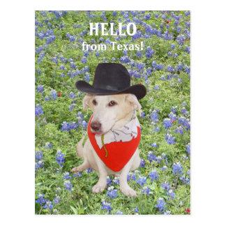 Cartão Postal Olá! de Texas!