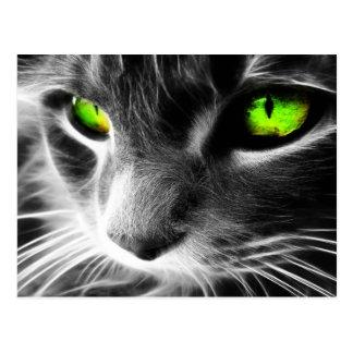 Cartão Postal Olhos verdes do gato cinzento