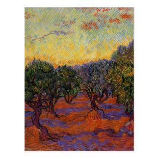 Cartão Postal Oliveiras - Vincent van Gogh