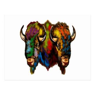 Cartão Postal Onde o búfalo vagueia