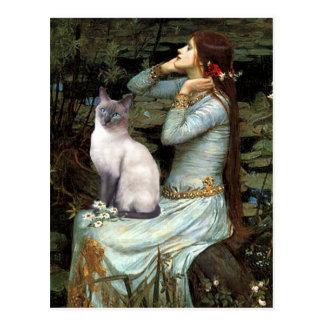 Cartão Postal Ophelia - gato Siamese de ponto azul