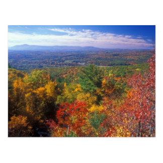 Cartão Postal Opinião da folha da montanha do monumento