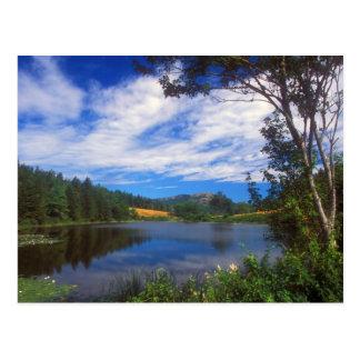 Cartão Postal Opinião longa da lagoa do Acadia