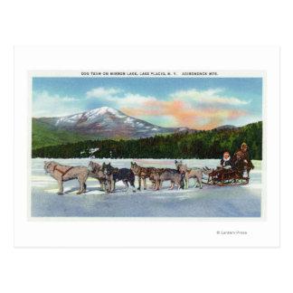Cartão Postal Opinião uma equipe de Dogsled no lago mirror