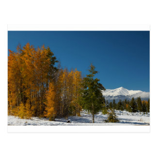 Cartão Postal Opiniões do outono de Leadville