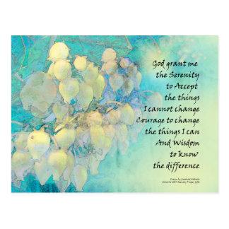 Cartão Postal Oração Manzanita da serenidade