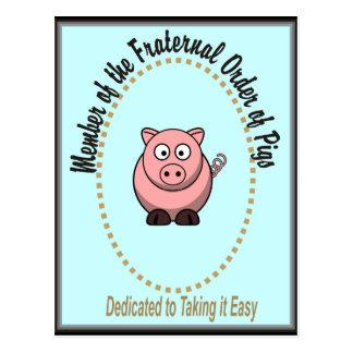 Cartão Postal Ordem fraterno de porcos