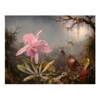 Cartão Postal Orquídea de Cattleya e três colibris