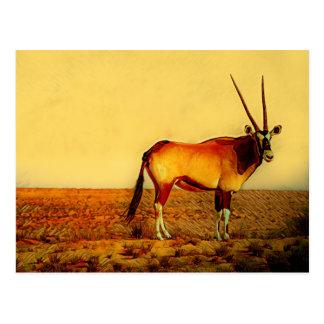 Cartão Postal Oryx