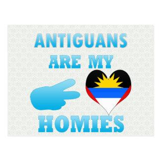 Cartão Postal Os Antiguans são meu Homies