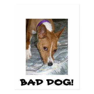 Cartão Postal Os cães comem o colchão. Cão mau