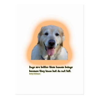 Cartão Postal Os cães são melhores do que seres humanos