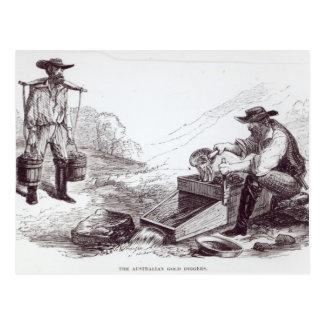 Cartão Postal Os escavadores de ouro australianos