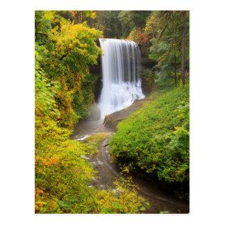 Cartão Postal Os EUA, Oregon, prata caem o parque estadual 3