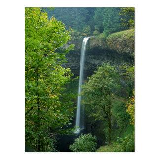 Cartão Postal Os EUA, Oregon, prata caem parque estadual